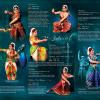 Peacock Brochure Design Template